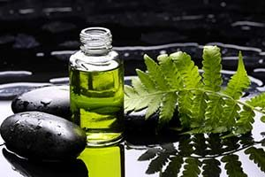 Unscented Massage Oils and Lotions